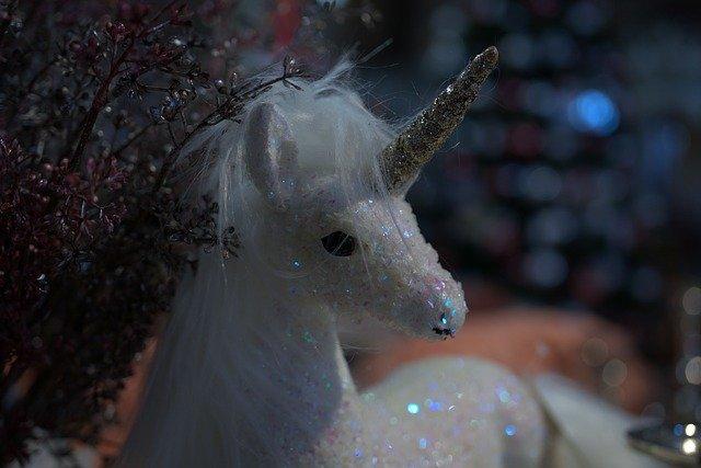 licorne brillante
