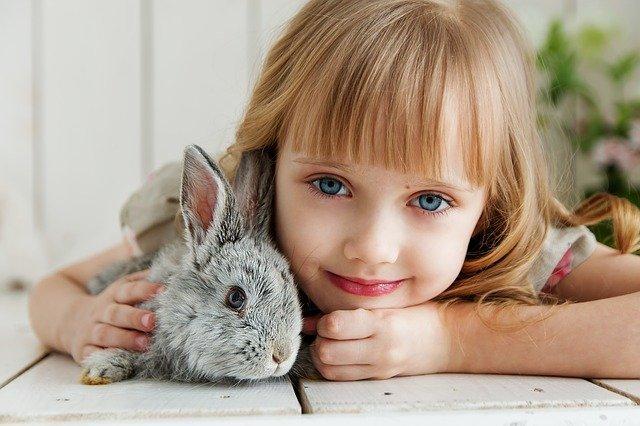 enfant et son lapin