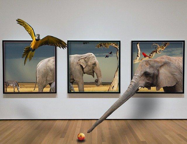 tableaux elephant