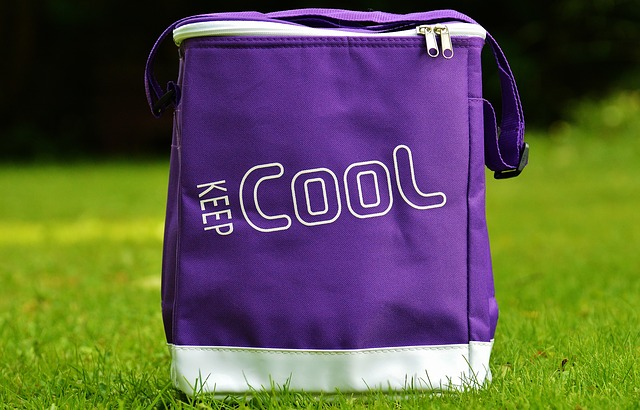 sac isotherme violet