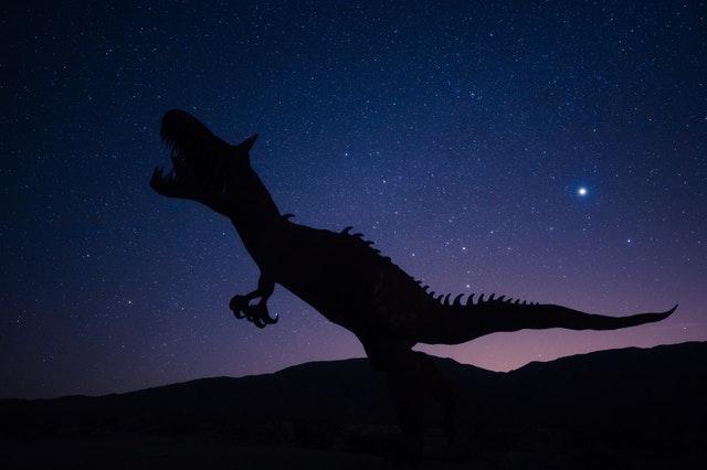 housses de couette dinosaure