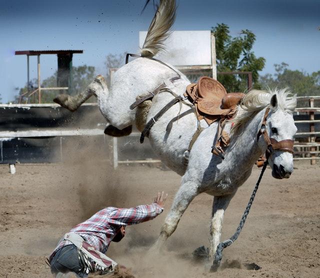 pratique d'équitation